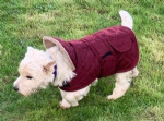 Dog Coat Jacket Quilted and Padded Burgundy